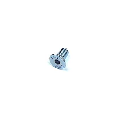 END PLATE SCREW M5 X .8 X 10MM FHSS CAD